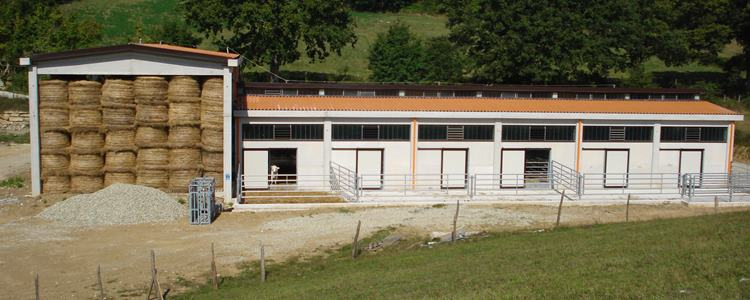 DSC01728 Impianti Agricoli e Zootecnici