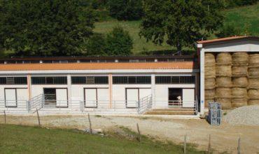 Impianti-Zootecnici2-370x220 Home