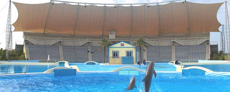 Tribuna-Delfini-Zoomarine-Torvaianica-Roma- Impianti Sportivi
