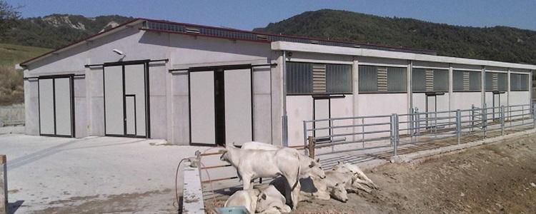 Rosati-Benito-1-1 Impianti Agricoli e Zootecnici